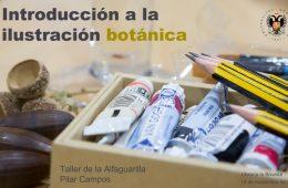 Curso de Ilustración Botánica, 18 de Noviembre 17